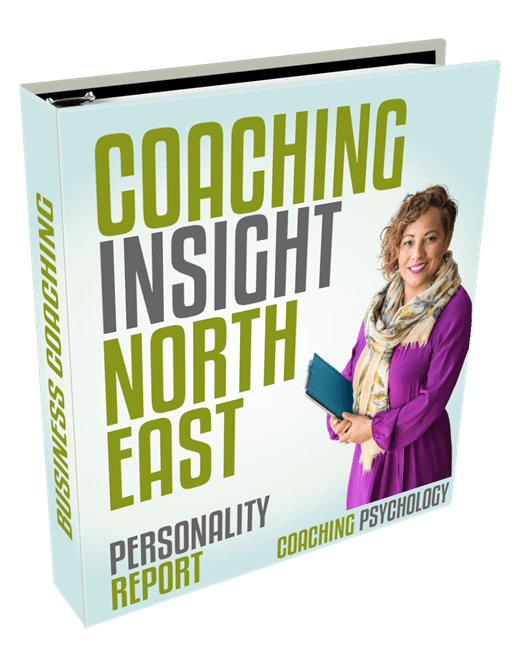 coaching insight north east